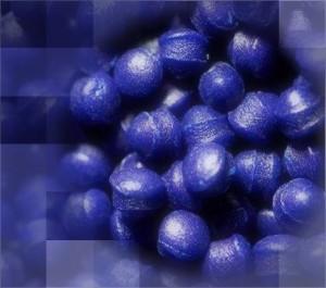 Imagen4-001